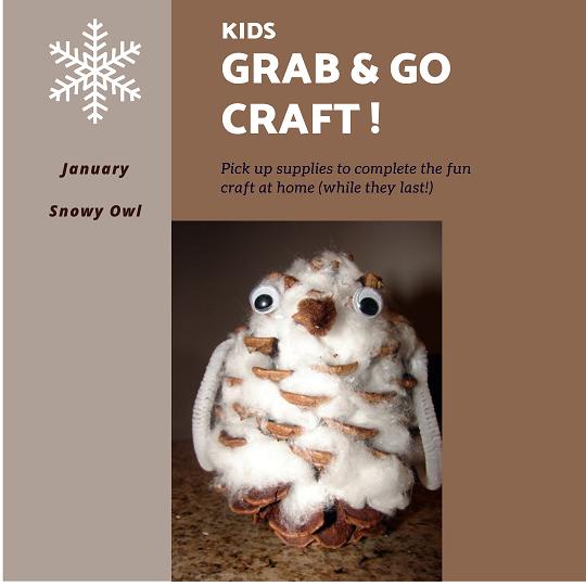 Insta Snowy Owl Grab Go Crafts.pngss